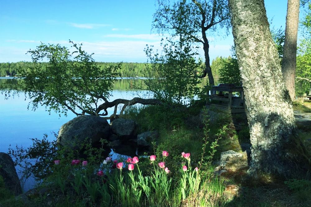 3/16(月)「旅茶カフェ:フィンランドのロヒケイット」